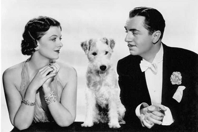 The Thin Man Myrna Loy, Asta, William Powell