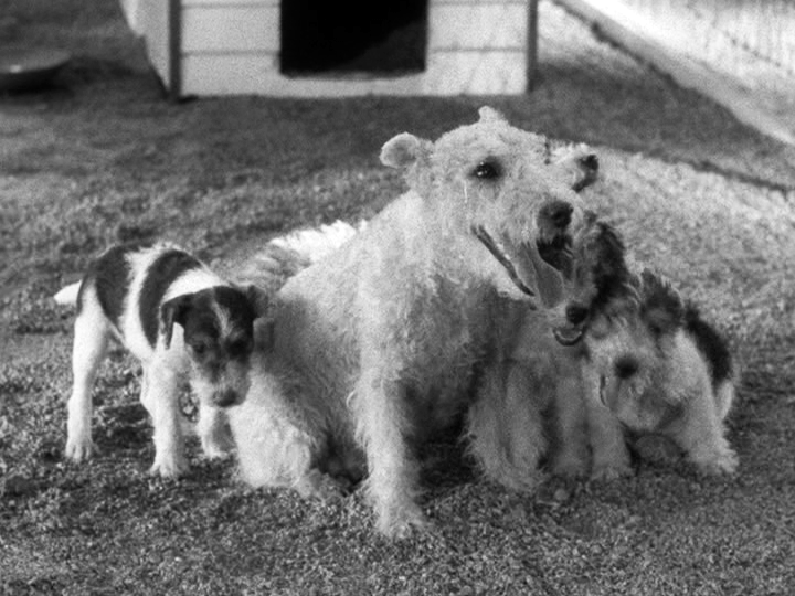 Mrs Asta and family in After The Thin Man
